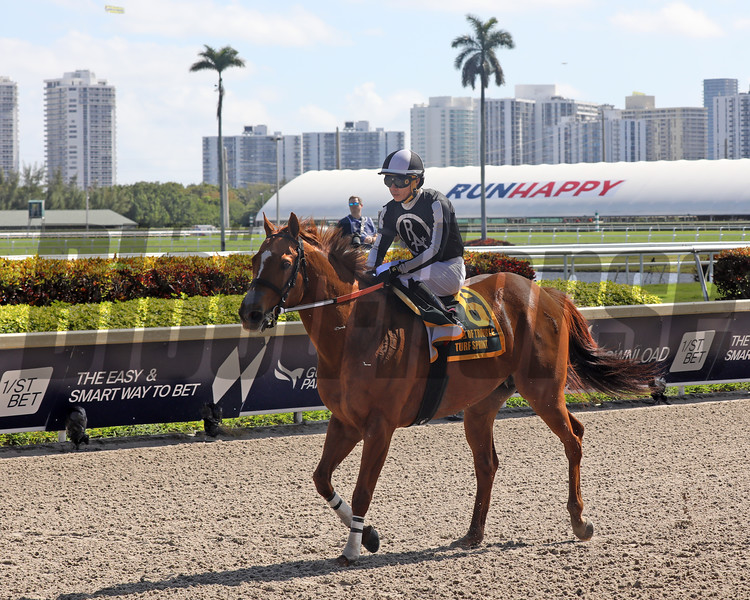 Pay Any Price in the 2020 World of Trouble Turf Sprint at Gulfstream Park Emisael Jaramillo jockey