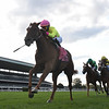 Plum Ali wins the 2020 Miss Grillo Stakes at Belmont Park<br /> Coglianese Photos/Chelsea Durand