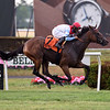 Mean Mary wins the 2020 New York Stakes at Belmont Park<br /> Coglianese Photos/Elsa Lorieul