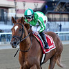 Mr. Buff wins the 2020 Haynesfield Stakes at Aqueduct<br /> Coglianese Photos/Elsa Lorieul