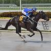 Boerne wins the 2020 Azalea Stakes at Gulfstream Park<br /> Coglianese Photos/Lauren King