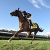 Channel Maker wins the 2020 Sword Dancer Stakes at Saratoga<br /> Coglianese Photos