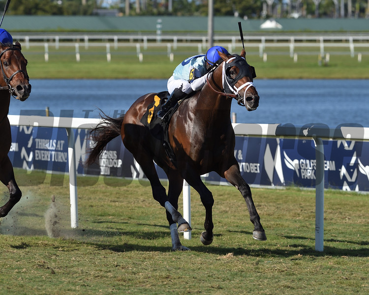 Outshine - CLM Win, Gulfstream Park, May 3, 2020<br /> Coglianese Photos/Ryan Thompson