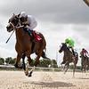 Lamplighter Jack wins an allowance optional claiming race October 23, 2020 at Gulfstream Park West. Photo: Coglianese Photos/Ryan Thompson