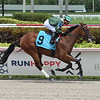 Breeze On By - Maiden Win, Gulfstream Park, July 12, 2020<br /> Coglianese Photos/Lauren King
