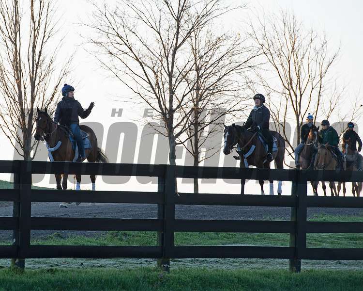 Caption: Kelly Wheeler, left on Applicator,  on her way to training.<br /> Behind the Scenes at Keeneland during Covid19 virus and the people, horses, and essentials needed to take care of race horses on April 2, 2020 Keeneland in Lexington, KY.