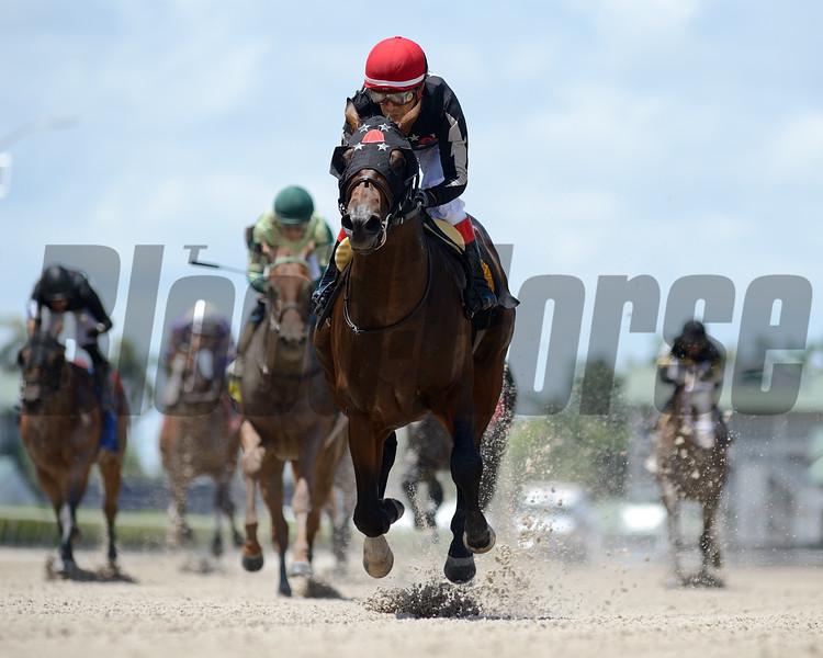 Man of Honor - Maiden Win, Gulfstream Park, June 13, 2020<br /> Coglianese Photos/Ryan Thompson