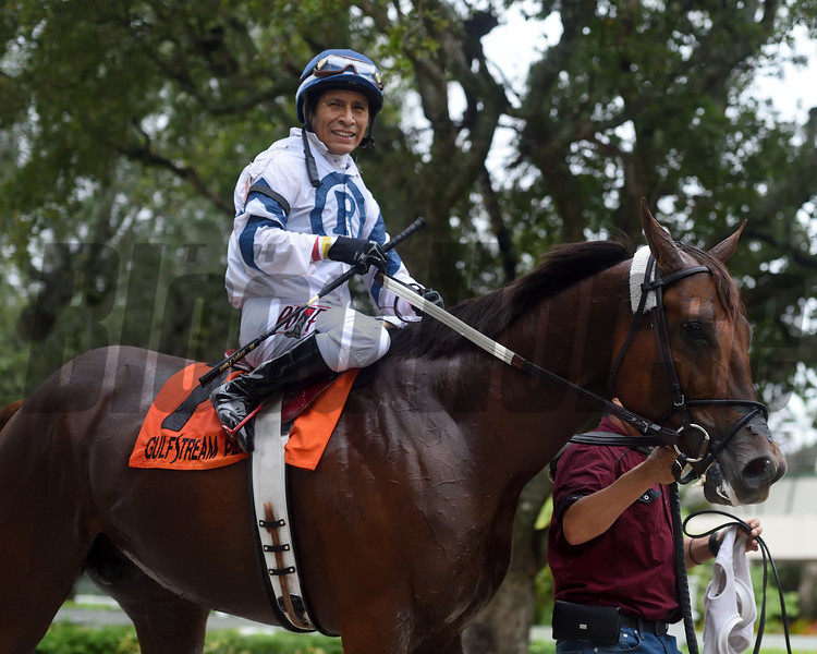 Monforte wins the 2020 Showing Up Stakes at Gulfstream Park West<br /> Coglianese Photos/Ryan Thompson