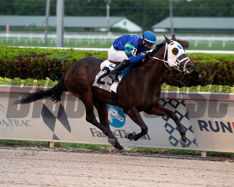 Warrior's Pride - AOC, Gulfstream Park, December 4, 2020<br /> Coglianese Photos/Derbe Glass