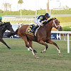 Largent wins the 2020 Ft. Lauderdale Stakes at Gulfstream Park<br /> Coglianese Photos/Lauren King