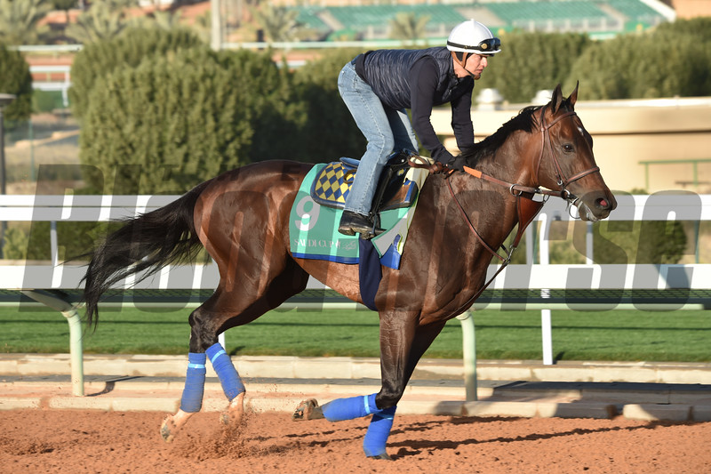 McKinzie - King Abdulaziz Racetrack, Riyadh - February 28, 2020<br /> Photo: Katsumi Saito