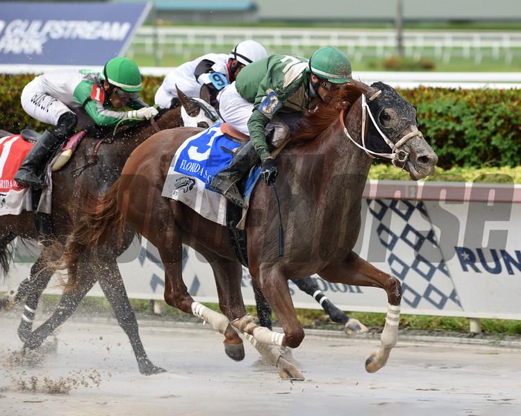 Go Jo Jo Go wins the 2020 FTBOA Florida Sire Desert Vixen Stakes at Gulfstream Park<br /> Coglianese Photos/Nicole Thomas