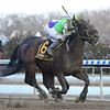 Adventist wins the 2020 Bernardini Stakes at Aqueduct<br /> Coglianese Photos/Chelsea Durand