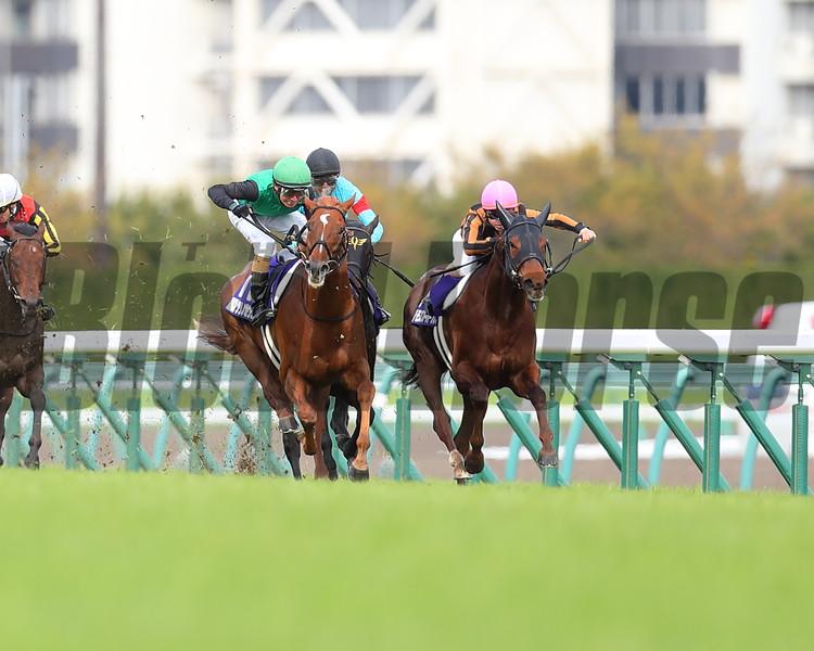 Mozu Superflare wins the 2020 Takamatsunomiya Kinen. Photo: Masakazu Takahashi