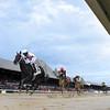 Yaupon wins the 2020 Amsterdam Stakes at Saratoga<br /> Coglianese Photos