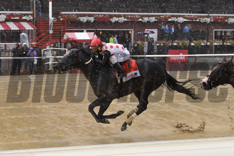 Win Win Win wins the 2020 Forego Stakes at Saratoga<br /> Coglianese Photos/Chelsea Durand