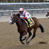 Complexity wins the 2020 Kelso Stakes at Belmont Park<br /> Coglianese Photos/Chelsea Durand