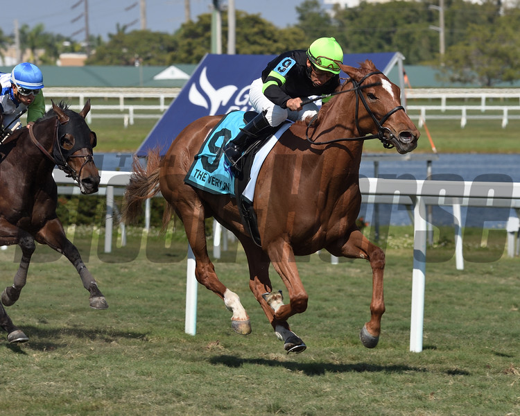Elizabeth Way wins the 2020 The Very One Stakes at Gulfstream Park<br /> Coglianese Photos/Lauren King