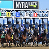 Racing scene at Aqueduct Racetrack. Photo: Coglianese Photos