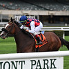 Royal Approval wins the Matron Stakes Sunday, October 11, 2020 at Belmont Park. Photo: Coglianese Photos/Joe Labozzetta