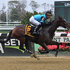 Brooklyn Strong wins the 2020 Sleepy Hollow Stakes at Belmont Park<br /> Coglianese Photos/Janet Garaguso