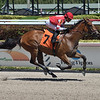 Center Aisle wins a maiden special weight Sunday, March 29, 2020 at Gulfstream Park. Photo: Coglianese Photos/Lauren King
