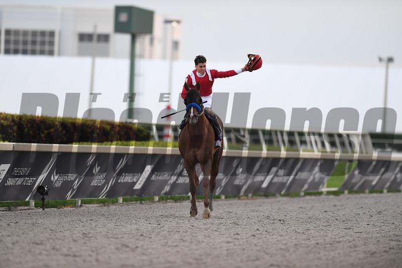 Mucho Gusto wins 2020 Pegasus World Cup Invitational at Gulfstream Park. Photo: Coglianese Photos/Zoe Metz