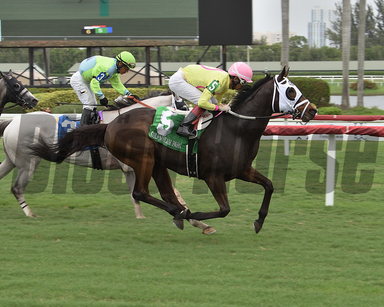 Muggsamatic wins the 2020 Soldier's Dancer Stakes at Gulfstream Park<br /> Coglianese Photos/Lauren King
