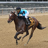 Brooklyn Strong wins the 2020 Sleepy Hollow Stakes at Belmont Park<br /> Coglianese Photos/Chelsea Durand