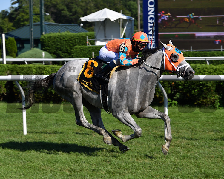 Jolting Joe wins the 2020 Cab Calloway Division of the New York Stallion Series Stakes <br /> Coglianese Photos