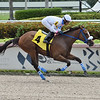 Hara - Maiden Win, Gulfstream Park, June 19, 2020<br /> Coglianese Photos/Lauren King