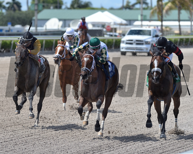 Double Crown wins the 2020 Roar Stakes at Gulfstream Park<br /> Coglianese Photos/Ryan Thompson