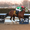 Mischevious Alex wins the 2020 Gotham Stakes at Aqueduct<br /> Coglianese Photos/Annette Jasko