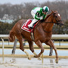 Mr. Buff wins the 2020 Jazil Stakes at Aqueduct<br /> Coglianese Photos/Elsa Lorieul
