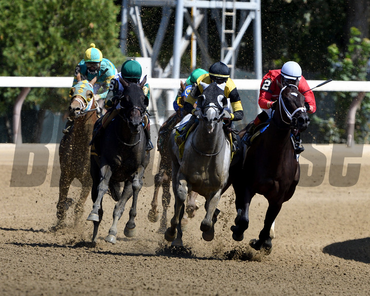 Chestertown wins the 2020 Albany Stakes at Saratoga<br /> Coglianese Photos/Dom Napolitano