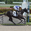 Restofthestory - Maiden Win, Gulfstream Park, August 28, 2020 <br /> First winner for Jess's Dream<br /> Coglianese Photos/Lauren King