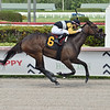 Crumb Bun - AOC, Gulfstream Park, May 28, 2020<br /> Coglianese Photos/Lauren King