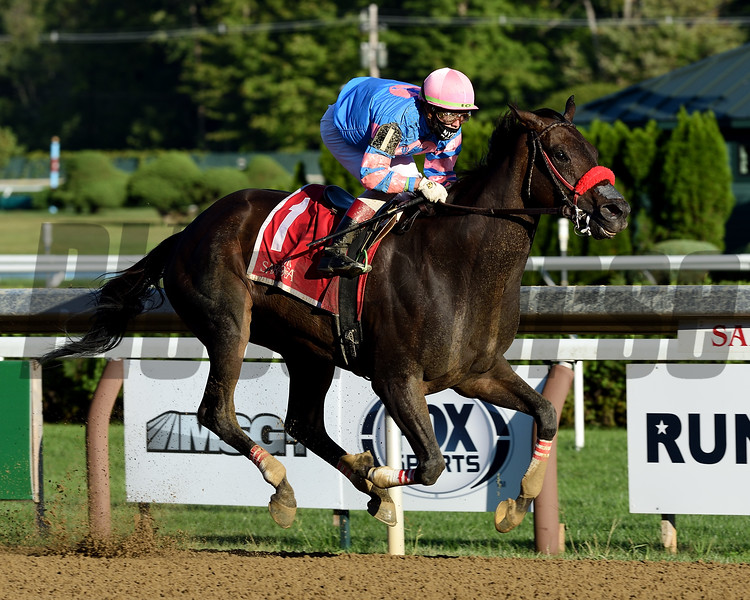 Come Dancing wins the Honorable Miss Handicap Sunday, September 6, 2020 at Saratoga Race Course. Photo: Coglianese Photos