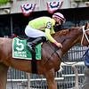 Monomoy Girl wins the Ruffian Stakes Saturday, July 11, 2020 at Belmont Park. Photo: Coglianese Photos/Joe Labozzetta