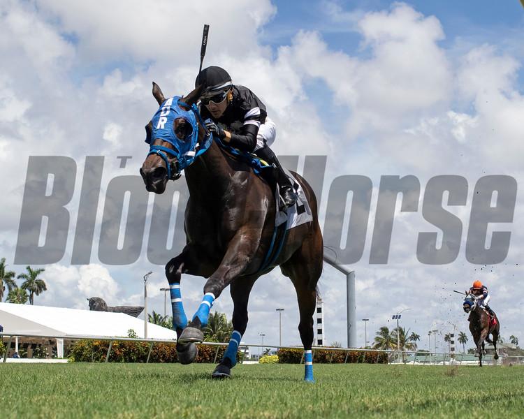 I Am the Boss - Maiden Win, Gulfstream Park, August 13, 2020<br /> Coglianese Photos/Ryan Thompson