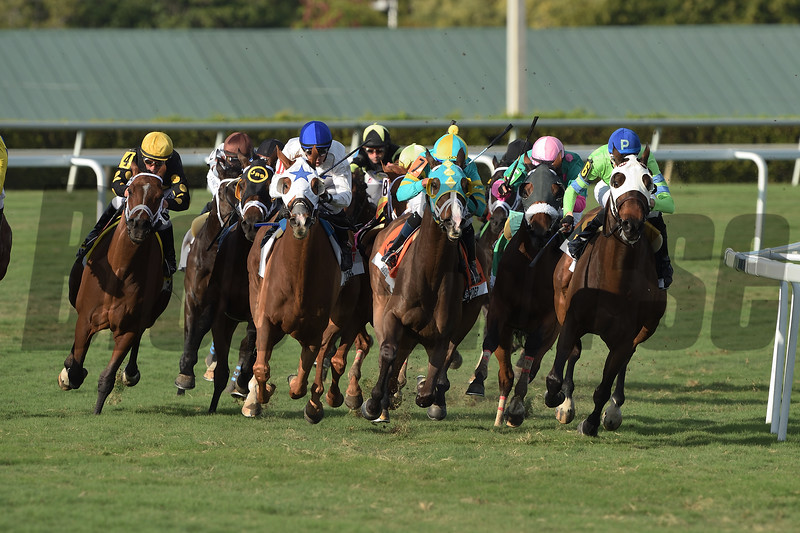 Spooky Channel wins 2020 W. L. McKnight Stakes at Gulfstream Park. Photo: Coglianese Photos/Tim Sullivan