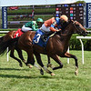 American Monarch - Maiden Win, Saratoga, August 8, 2020<br /> Coglianese Photos/Chris Rahayel