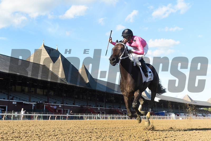 Vequist with jockey Luis Saez leaves the field behind to win the Grade 1 Spinaway at the Saratoga Race Course Sunday Sept. 6, 2020 in Saratoga Springs, N.Y.  Photo by Tim Lanahan