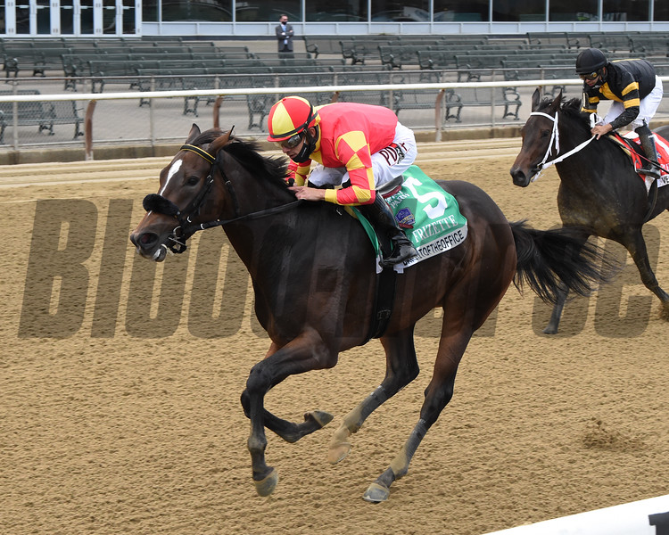 Dayoutoftheoffice wins the 2020 Frizette Stakes at Belmont Park<br /> Coglianese Photos/Chelsea Durand