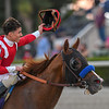 Mucho Gusto wins 2020 Pegasus World Cup Invitational at Gulfstream Park. Photo: Mathea Kelley