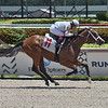 Hot Blooded - Maiden Win, Gulfstream Park, July 24, 2020<br /> Coglianese Photos/Lauren King