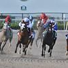 Tiz the Law wins the 2020 Florida Derby at Gulfstream Park. Photo: Coglianese Photos/Nikki Bernstein