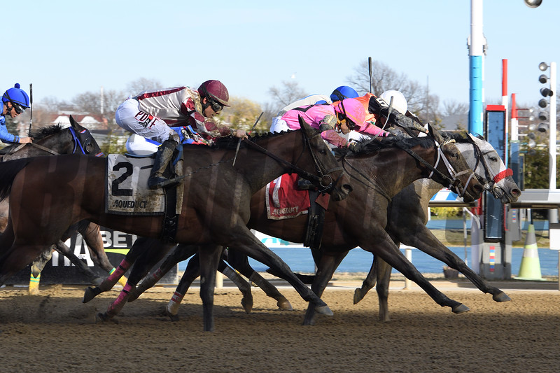 Piedi Bianchi wins the Correction Stakes at Aqueduct March 14, 2020. Photo: Coglianese Photos/Susie Raisher