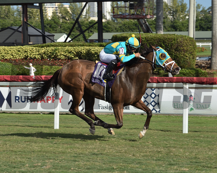 Jakarta wins the 2020 Claiming Crown Distaff Dash Stakes<br /> Coglianese Photos/Lauren King