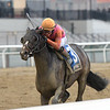 Max Player wins the 2020 Withers Stakes at Aqueduct<br /> Coglianese Photos/Elsa Lorieul